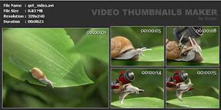 SUU Design Video Thumbnails Maker 3.0.0.8