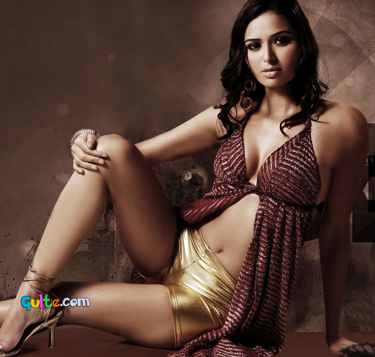 sizzling hot south indian actress meenakshi dixit