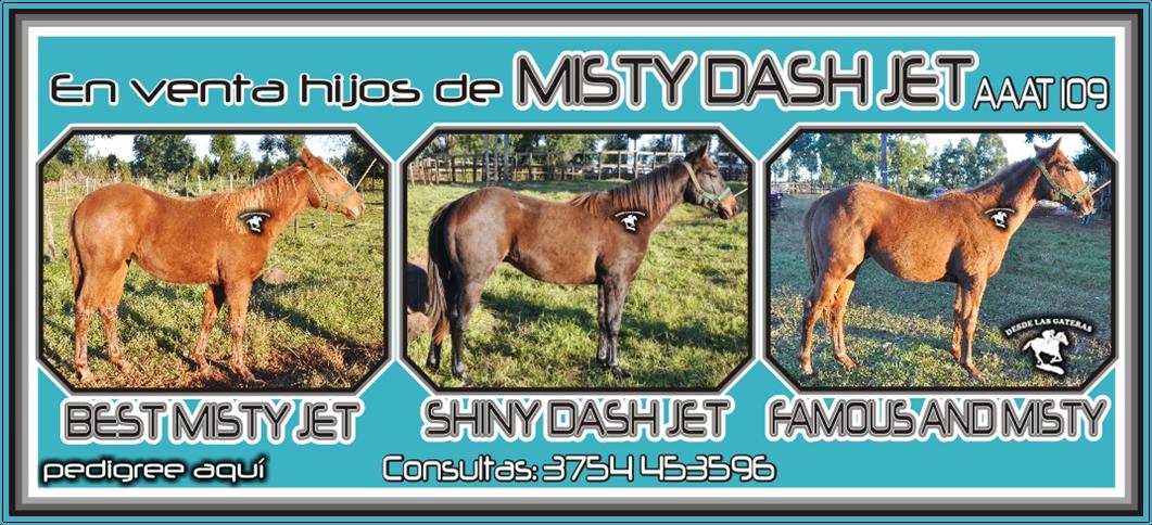 http://desdelasgateras.blogspot.com.ar/2014/06/clasificado-hipico-hijos-de-misty-dash.html