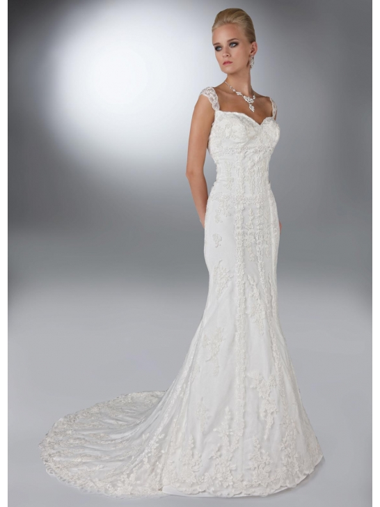 Wedding dress business about spaghetti straps wedding dresses for Spaghetti strap wedding dress