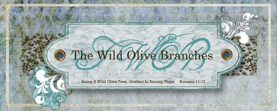 The Wild Olive Branches