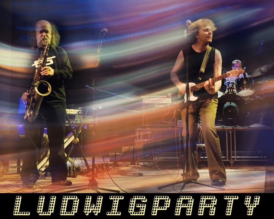 Продюсерский центр «LUDWIG party»