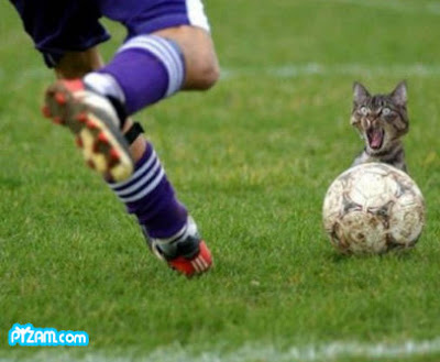 funny football quotes. Funny Romanian Football Quotes