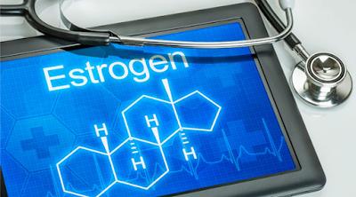 Meningkatkan Hormon Esterogen