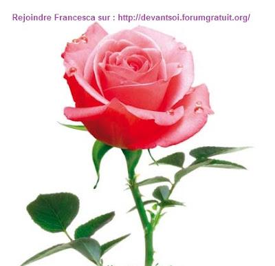 Divin sur terre les enseignements d 39 omraam et de p for Livrer une rose