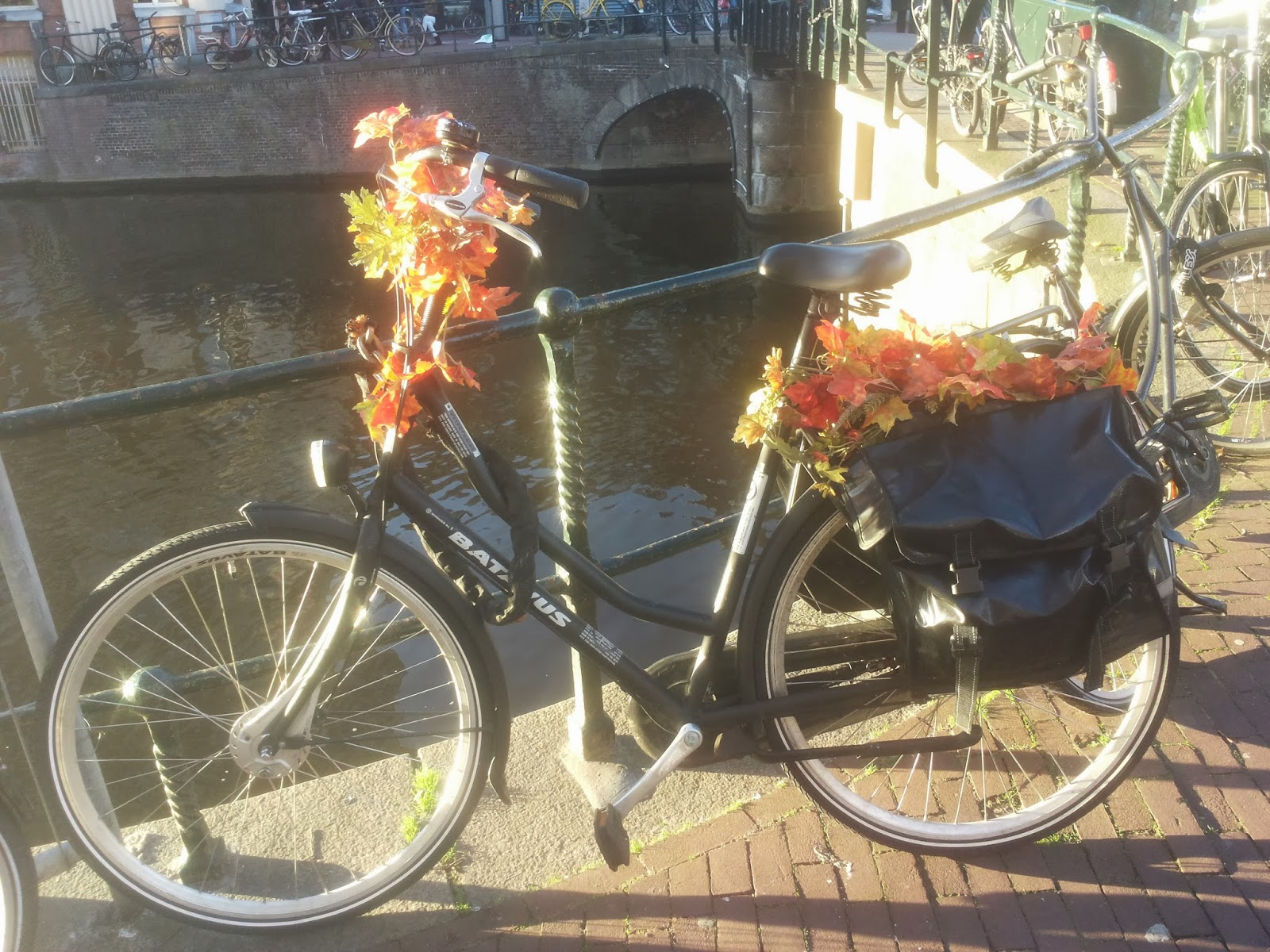 sightseeing Amsterdam bike