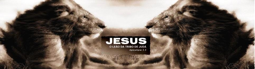 OS GUERREIRO DE JUDAH & ATALAIAS