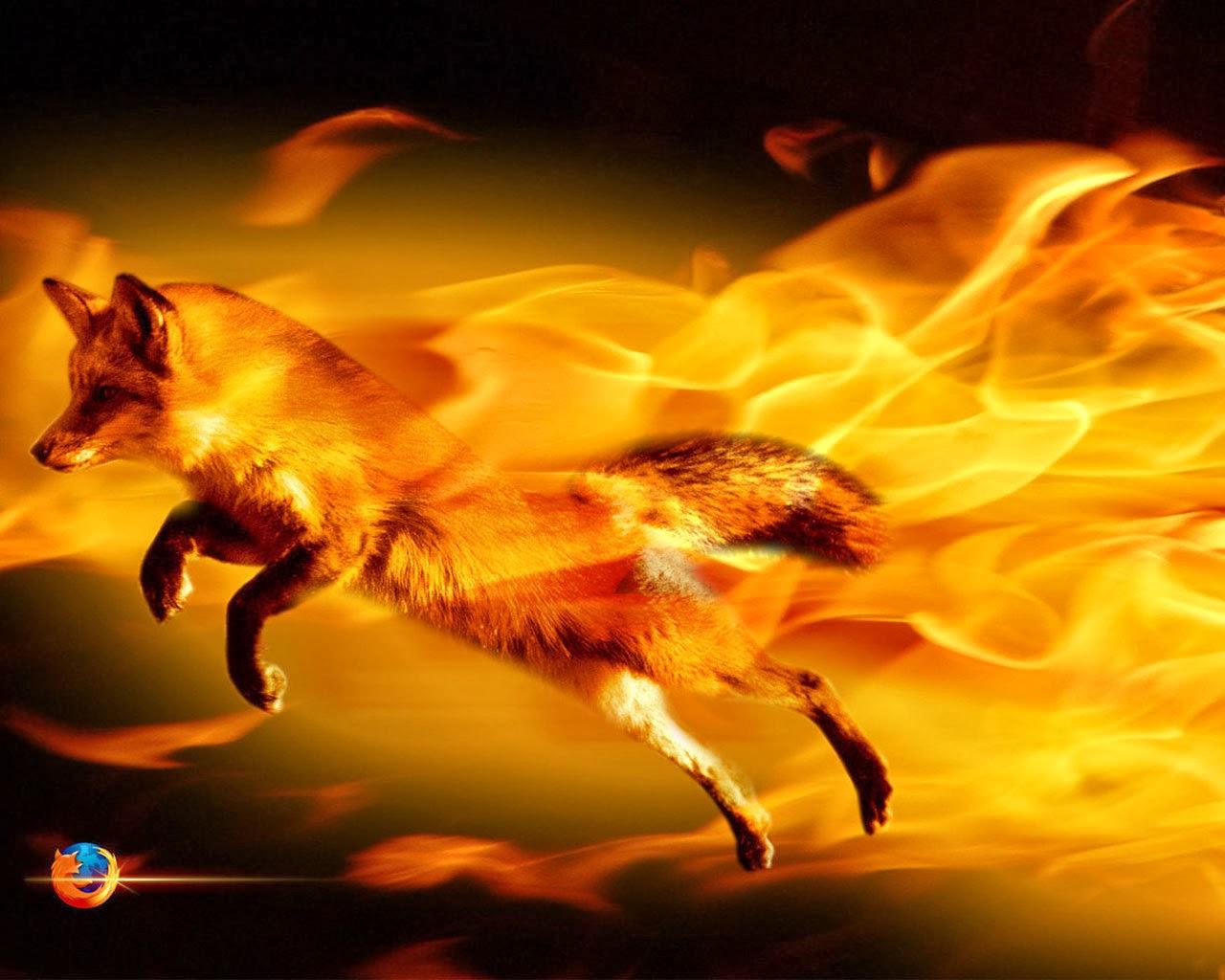 Fire fox wallpapers