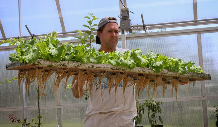 http://www.marketplace.org/topics/sustainability/how-grow-lettuce-and-fish-indoors-all-year-long