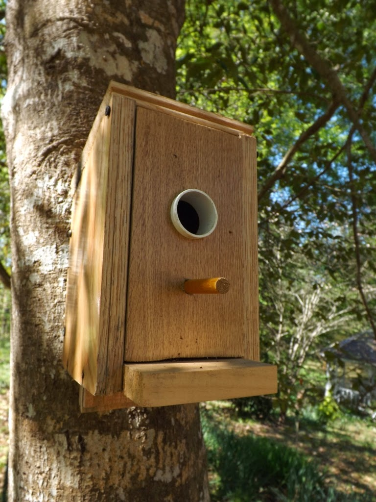 Diy Birdhouse Mariettes Back To Basics Diy Squirrel Proof Bird Houses