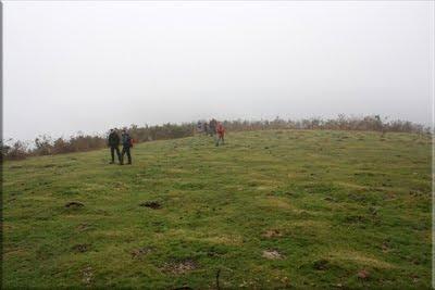 Llegamos a una pequeña pradera herbosa