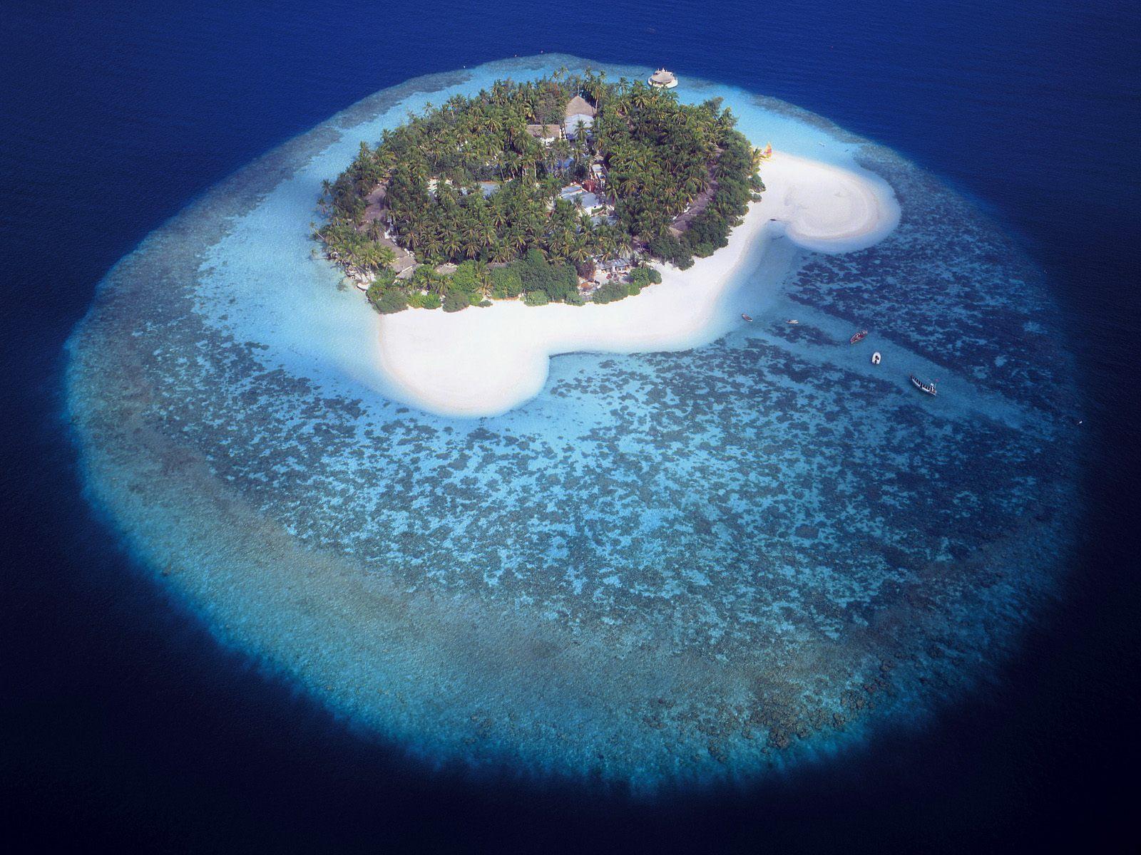 http://4.bp.blogspot.com/-S90MdIoCSoU/TiRYOrpFYOI/AAAAAAAACtM/Sx-08Xxa6NM/s1600/tropical+island+wallpaper-3.jpg