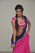 Shreya Vyas photos at Bengal Tiger audio-thumbnail-18