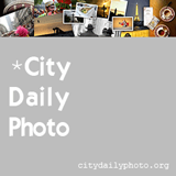City Daily Photo blogging community