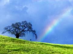 http://4.bp.blogspot.com/-S9B7DB36mkA/TacRbzfP7DI/AAAAAAAABz8/OMdkKDdLANk/s1600/enjoy_nature.jpg