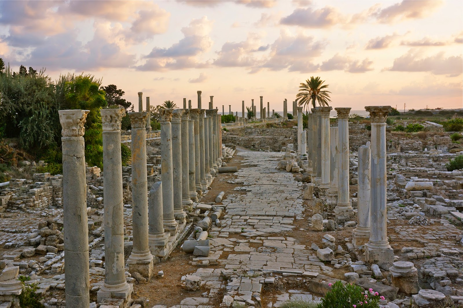 Picture of the ancient Roman road in Tyre, Lebanon.
