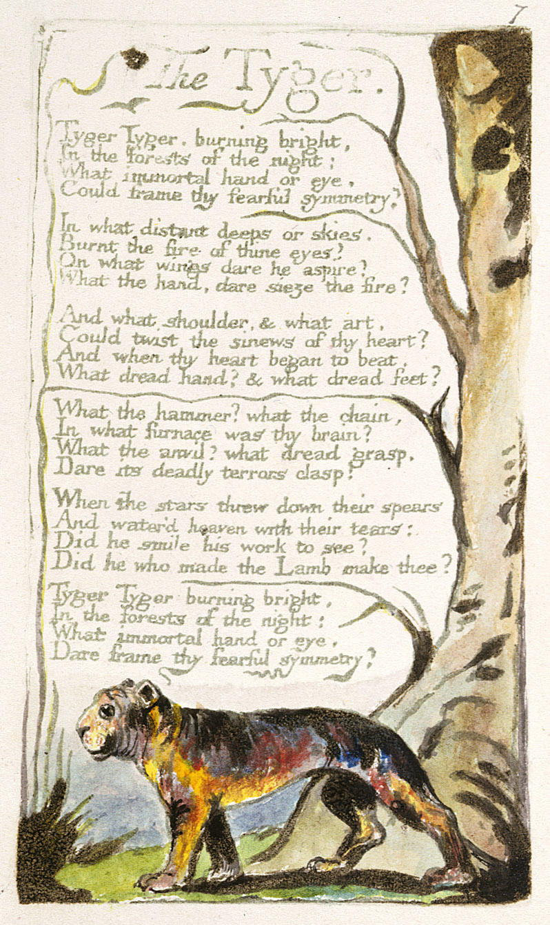 the lamb the tyger and the William blake1757 - 1827 the tyger and the lamb were both poems by william blake blake as a child was an outcast, and did not have many.