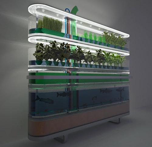 Home aquaponics garden diy