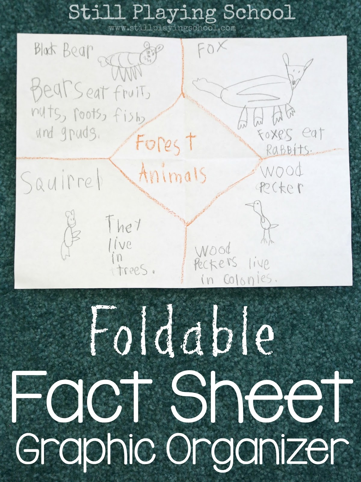 Forest animals foldable graphic organizer still playing school use this foldable fact sheet graphic organizer to demonstrate learning ccuart Choice Image