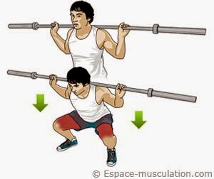 Squat barre Methode De Musculation