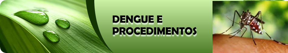 DENGUE e PROCEDIMENTOS 