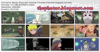 Naruto Shippuden Episode 315 Bahasa Indonesia