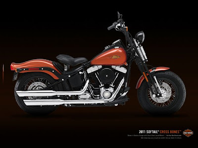 2013 Harley-Davidson FLSTSB Cross Bones Softail