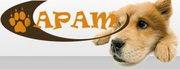 APAM Homepage