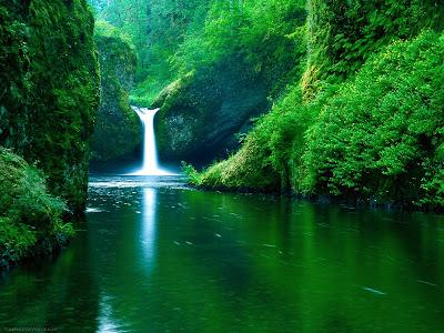 Foto Air Terjun dan Sungai Hijau