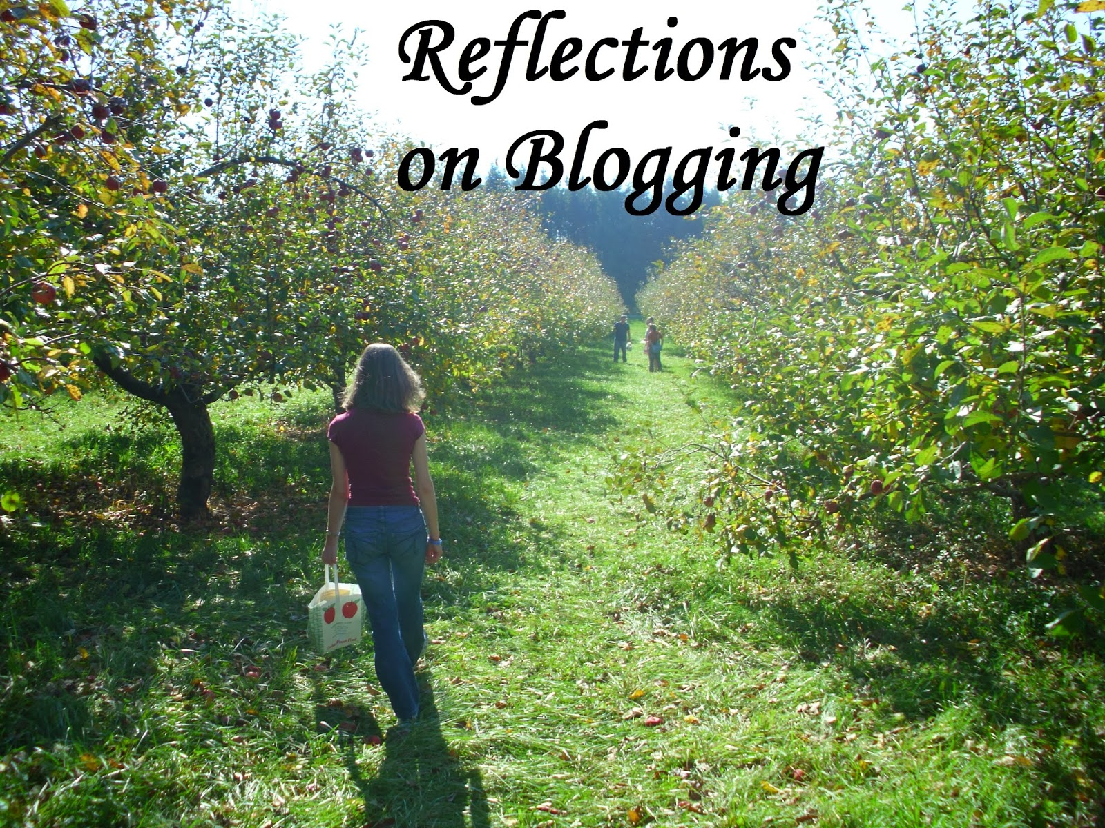 reflections on blogging