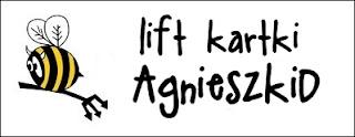 http://diabelskimlyn.blogspot.ie/2014/01/lift-kartki-agnieszkid.html