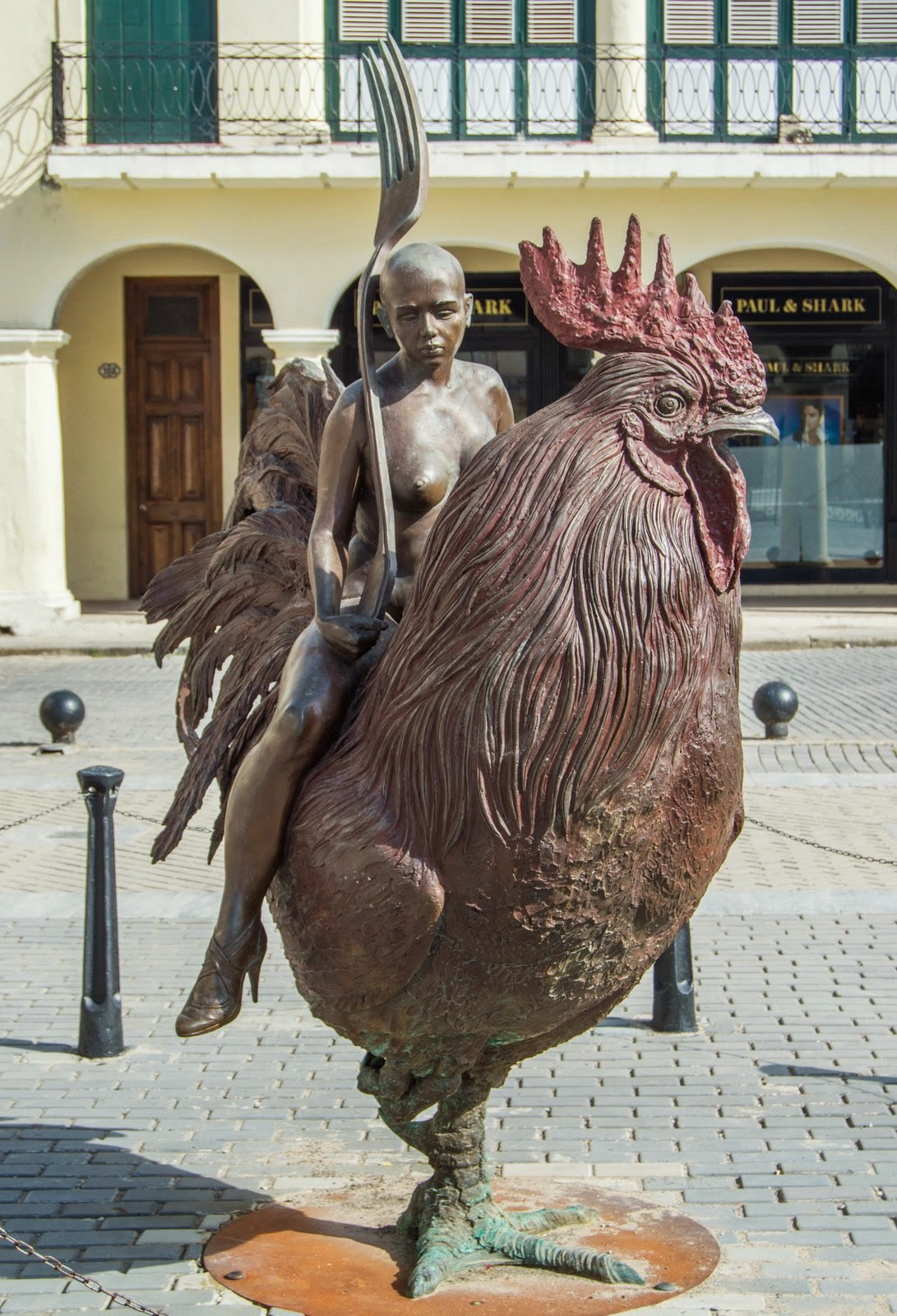 Rooster dating