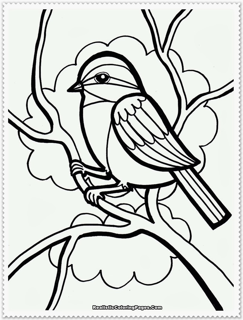 Bird Coloring Pages Realistic Realistic Coloring Pages