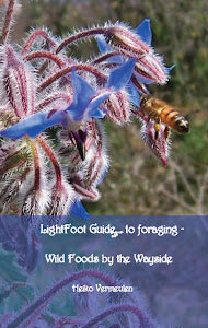 Lightfoot Guide to Foraging - Wild Foods by the Wayside