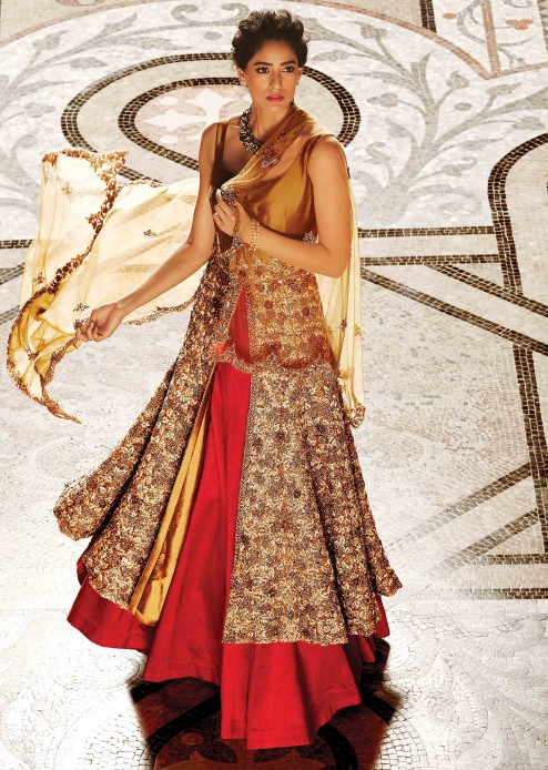 Indian Dresses - Fusion Style