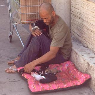 Morador de rua vende tudo que tinha para poder cuidar dos filhotinhos de sua cadelinha