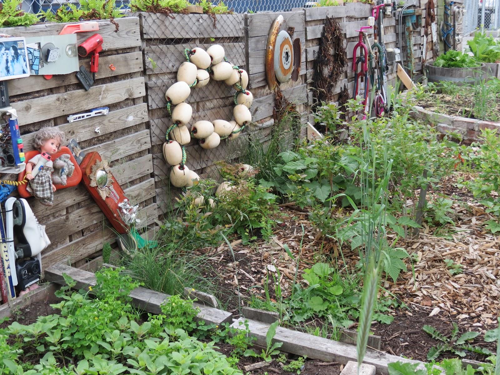 Vancouver Street Blog Community Gardens Decor