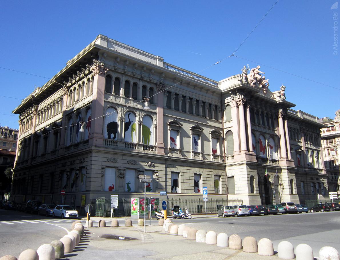 museogdoria_6002.jpg