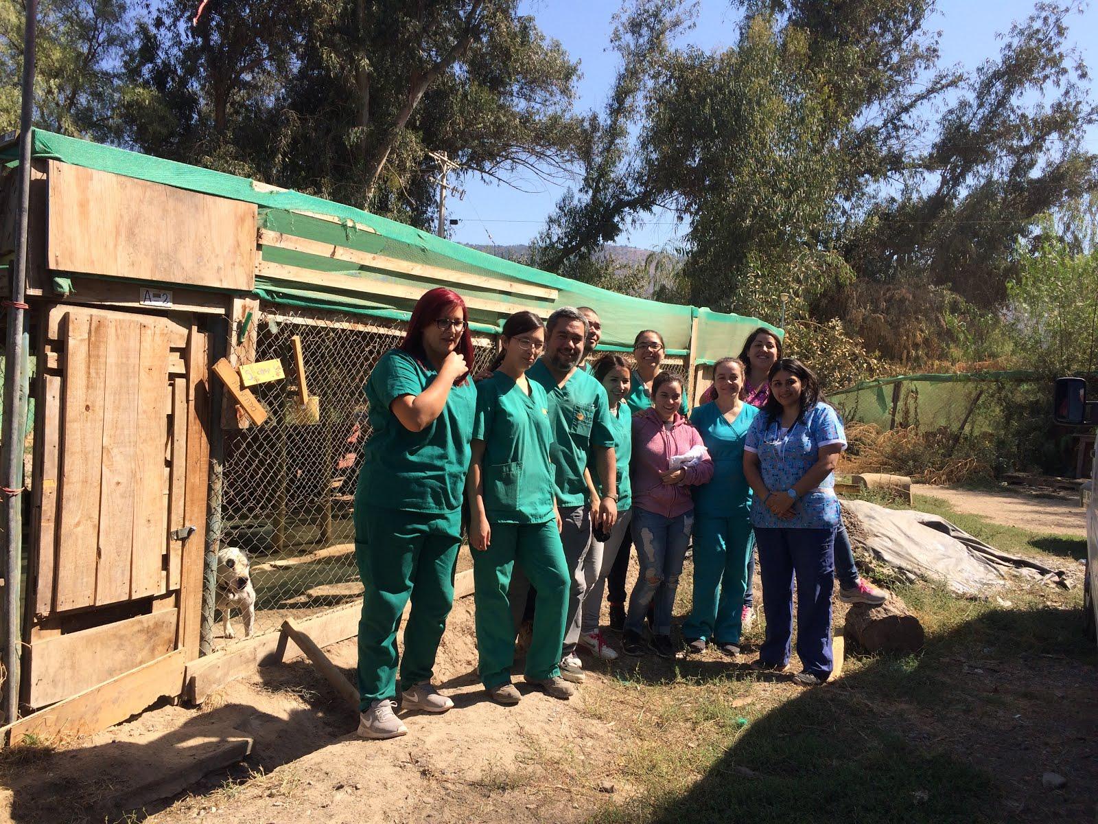 Gracias a los Voluntarios: Operativo 2 de Abril
