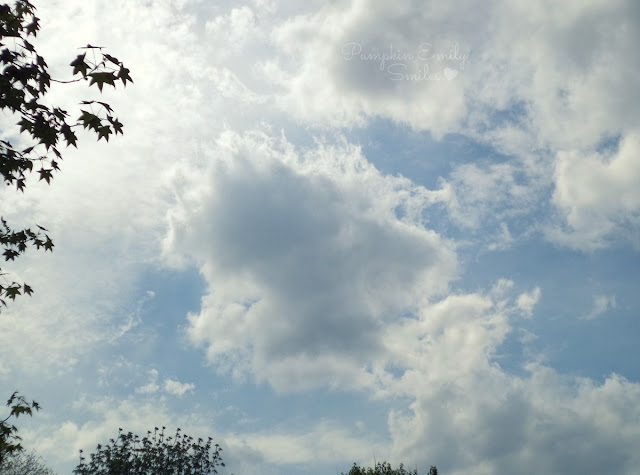 Clouds that look like someone praying, a mermaid, and a frog