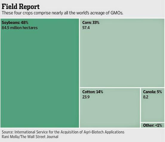 大豆 トウモロコシ 綿 キャノーラ 遺伝子組み換え作物 作付面積 シェア 比率 割合