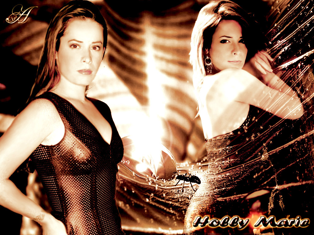 Labels: holly marie combs wallpaper, hollywood Images, hollywood photo, ...
