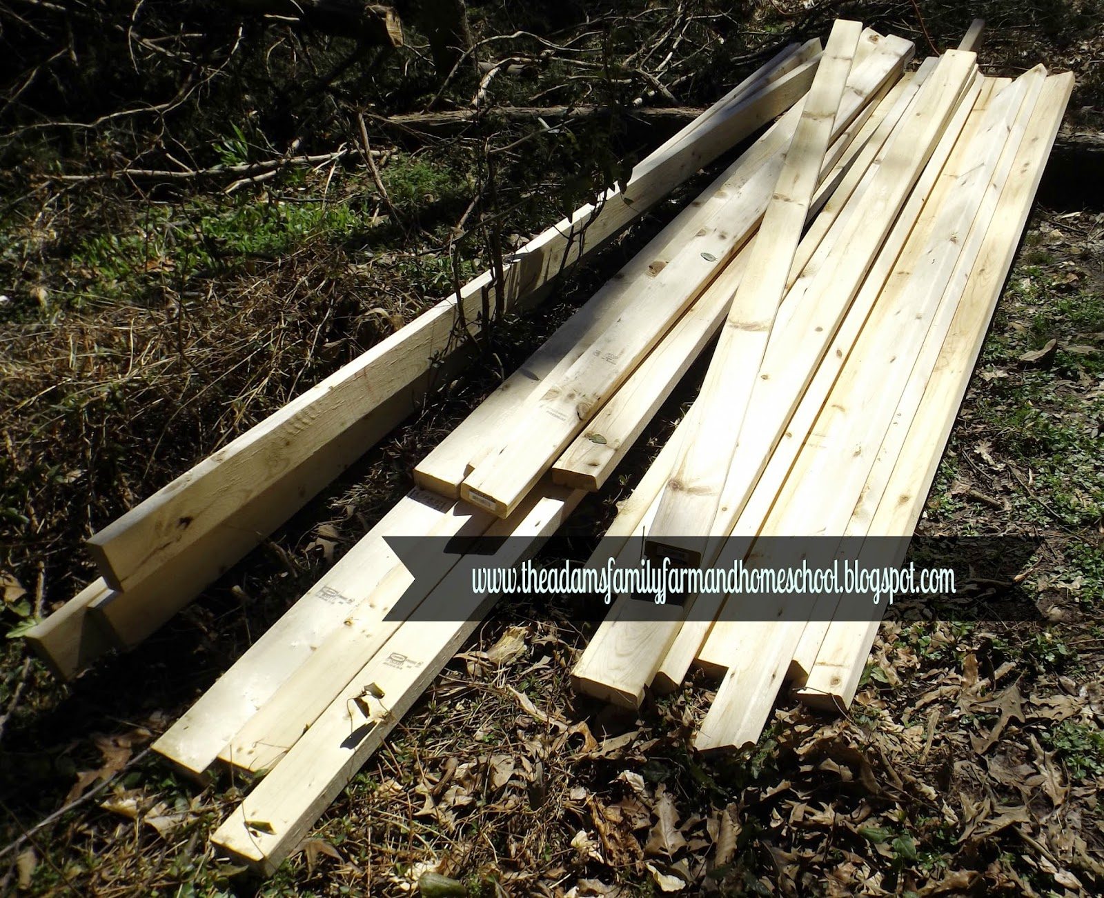 2x4s for Rabbit Cage