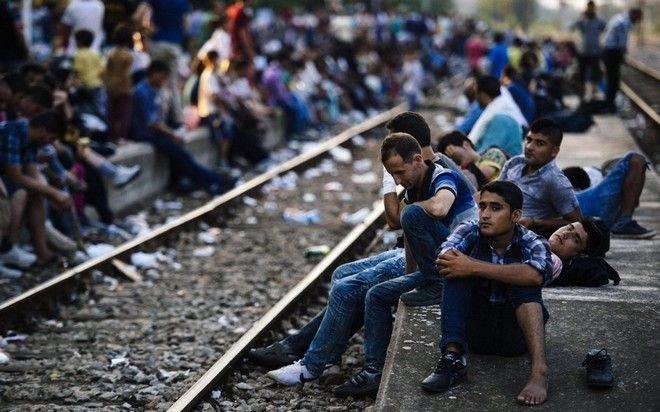 #refugeesGr: Ενημέρωση και Αλληλεγγύη
