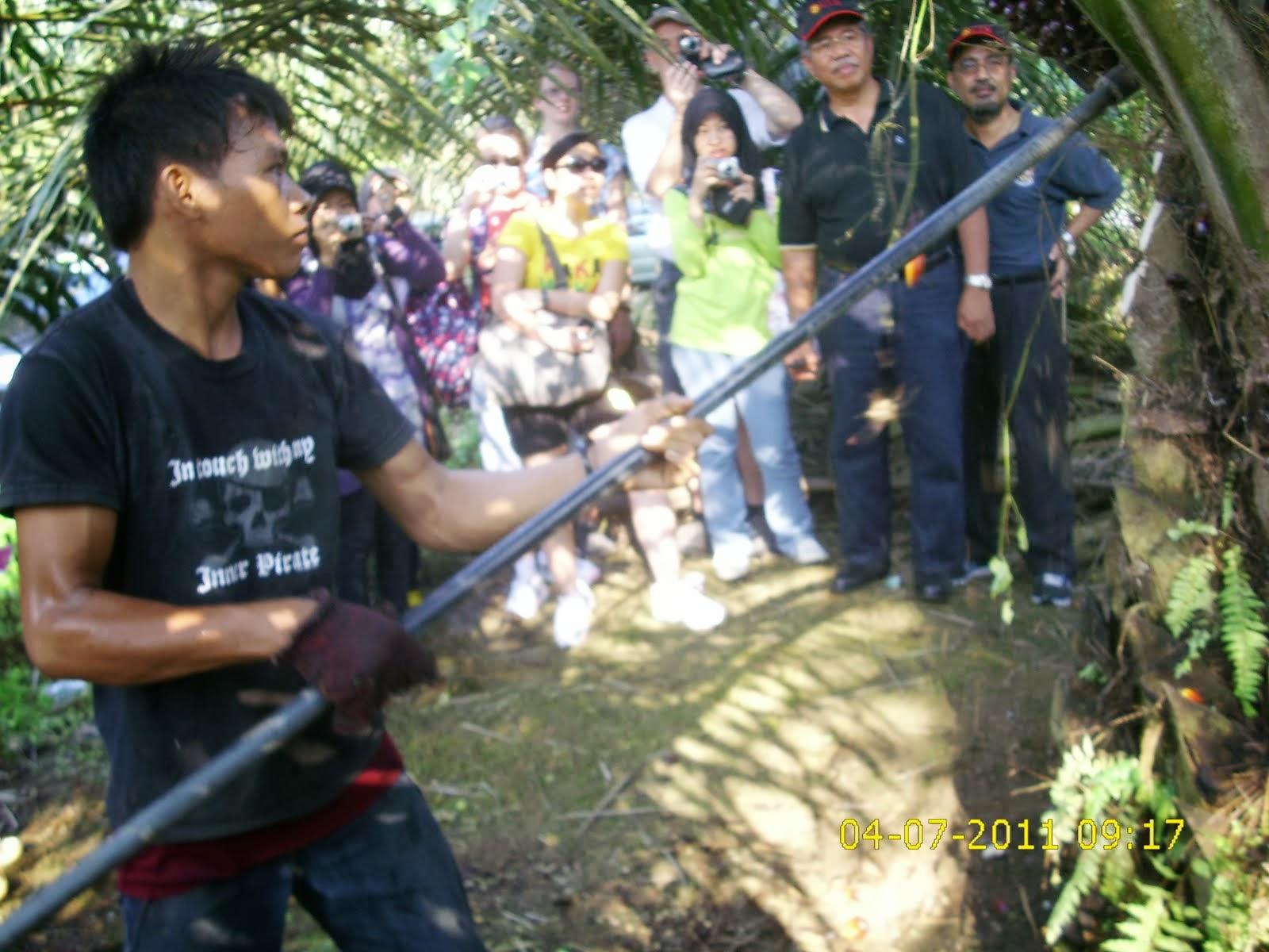 عش أفضل السبل لخوض تجربة الحياة الماليزية الأصيلة والتعرف على ثقافتها (مصور)