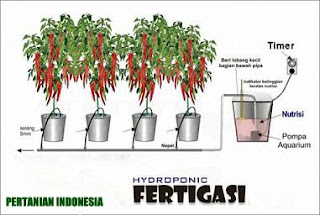 Hydroponic The System Drops