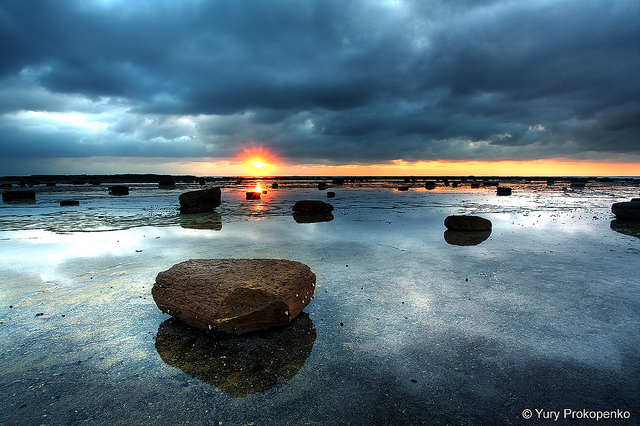 Long Reef, Sydney's Northern Beaches, Australia