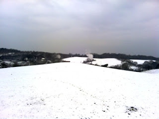 Hartshill Hayes quarry view