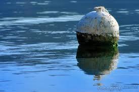 Satgas Koarmatim Hancurkan Ranjau Laut Peninggalan Jepang