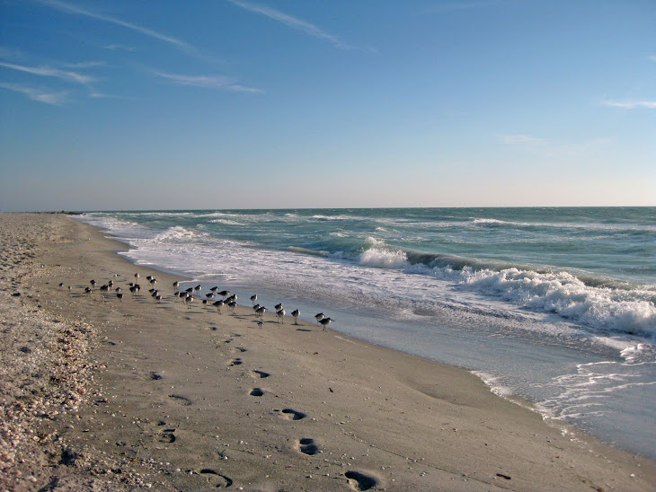 Beach at Captiva